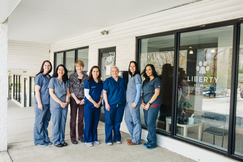 Liberty Vet Group Photo | Philadelphia Veterinarian
