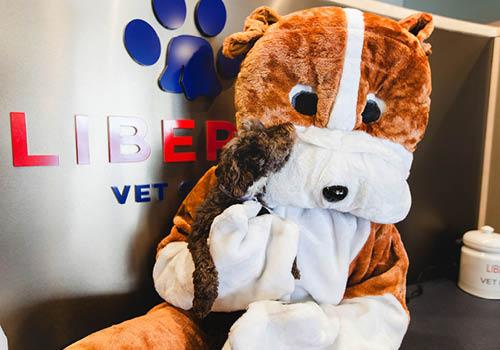 Bingo Liberty Vet Clinic Mascot