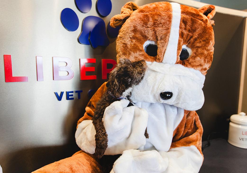 Bingo Liberty Veterinary Clinic
